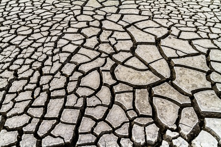 Seamless cracked dry ground texture background