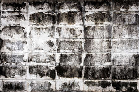 White mortar brick block wall surface texture background photo