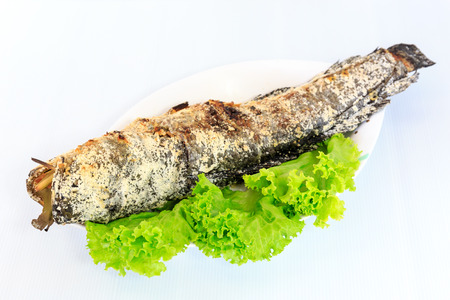 catfish: Grilled salted catfish on white dish Stock Photo