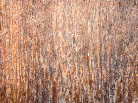 wood panel: old brown wood texture surface background
