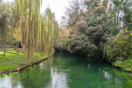 Scenic of canal and trees in treviso Italy Banque d'images