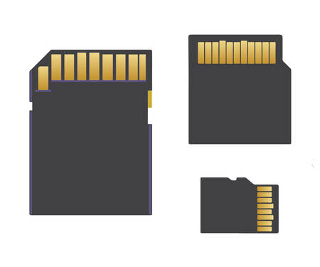 sd card: sd card, mini sd card, micro sd card vector