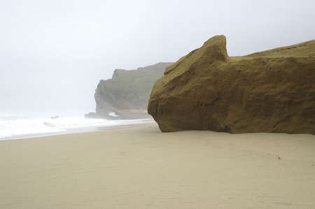 Beach rock in fog