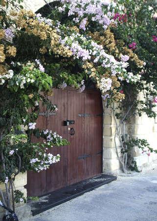 floral vines surround large wooden doorway Stock Photo