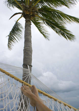 feet in hammock hanging from a palm tree