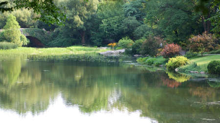 beautiful colourful gardens and pond Stock Photo