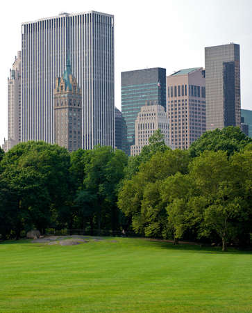 buildings of new york city surrounding central park