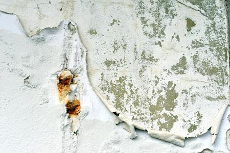 urban decay: Peeling white paint on plaster