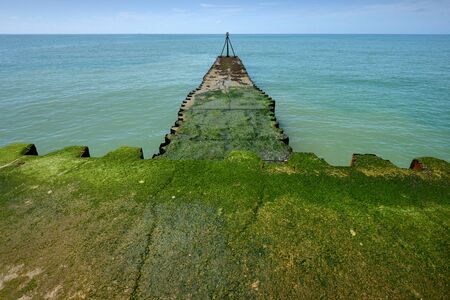 outflow: Green algae covered jetty in English Channel Stock Photo