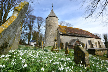 south downs: Snowdrops and round tower of Southease Church, East Sussex