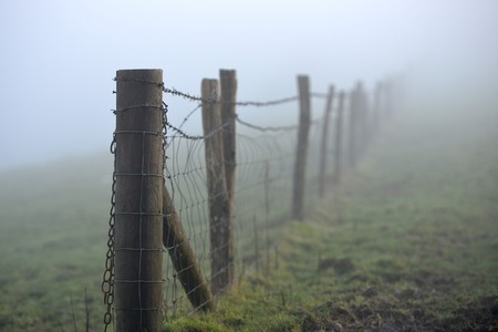 barbs: Misty barb wire stock fences on south downs Stock Photo