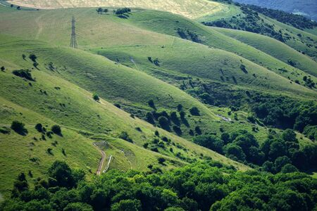 south downs: Rolling hills in the South Downs National Park