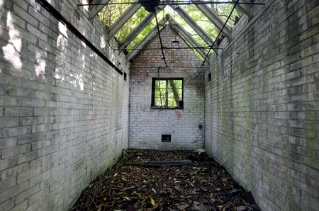 derelict: Small derelict brick shed in a wood