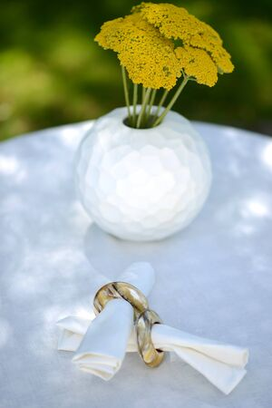napkin ring: White vase and horn napkin ring on a linen tablecloth outside