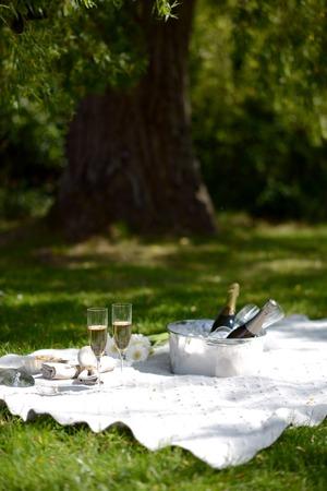 cubiertos de plata: picnic de verano de lujo con champán y platería