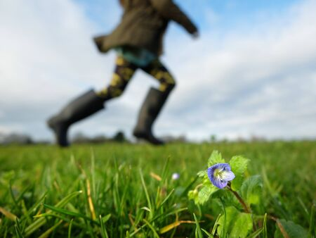 welly: Children running on a lawn with small corn speedwell flowers Stock Photo