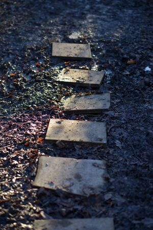 stepping: five square stepping stones over muddy path