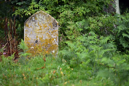 Old graves in an overgrown graveyard Stock Photo