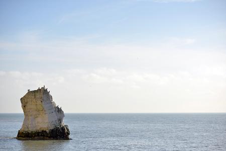 スプラッシュポイント、シーフォード、イーストサセックスのチョーク海の岩