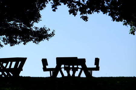 Picnic benches under the shade of trees in summer. Stock fotó