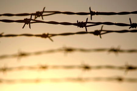 Conceptual image of barbed wire backlit at sunset.