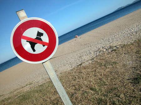 No dog sign on a beautiful empty beach photo
