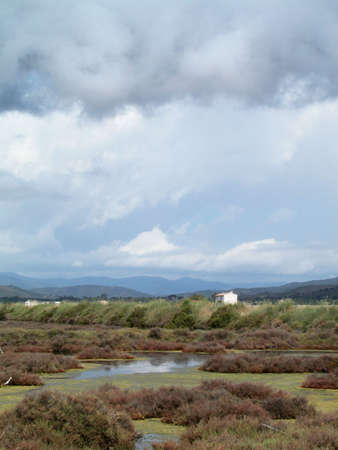 res: Scenic landscape of old salt pans in Hy�res, south of France Stock Photo
