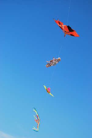 Colored kites on blue sky, free copy space Stock Photo - 7642746
