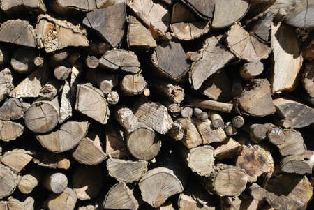 Pile of firewood, wood backlogs as background