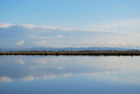 Scenic saltern and water reflections, Cervia, Ravenna, Italy Stock Photo
