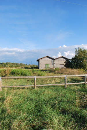 Rural house in meadow during summer, Cervia, Ravenna, Italy photo