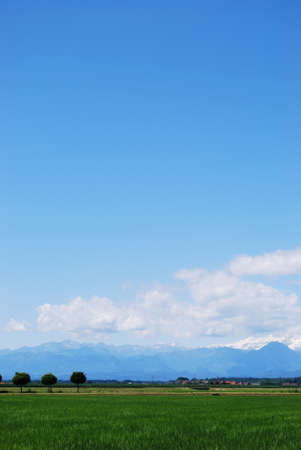 Flat farmland in summer, Alps mountains in background, Po valley, Piedmont, Italy Stock Photo