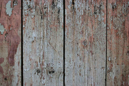 Vintage grunge wood wall texture background  Stock Photo - 16767779
