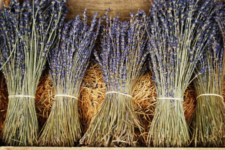 Bunches of dried lavender flowers for sale in Provence, France Stock Photo