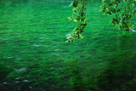 Sorgue river clean green water, Fontaine de Vaucluse, Provence, France