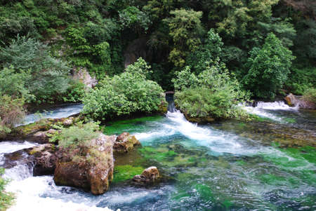 fontaine: Sorgue river clean green water, Fontaine de Vaucluse, Provence, France
