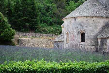 Senanque Abbey with lavender field, Gordes, Vaucluse, Provence, France