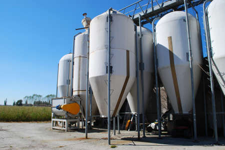 Group of small silos for storing grain
