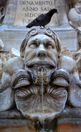 grotesque: Grotesque monster look at the pigeon over his head. Pantheon fountain detail