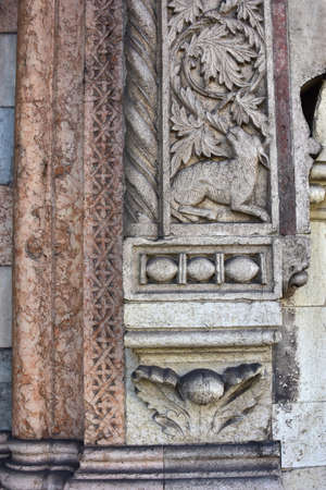 entanglement: Detail of a sheep among plants from a relief in San Fermo Maggiore church gothic portal (14th century)