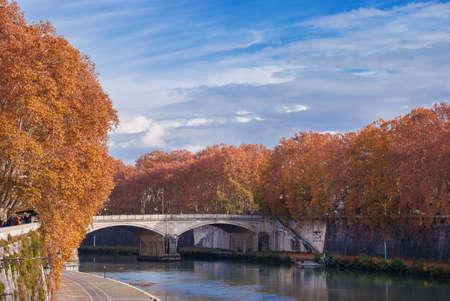 Feuilles d'automne le long du fleuve Tibre à Rome