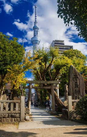 Tokyo, Japan, November 19, 2017: Modern and tradition in Japan. Tokyo Skytree behind an old temple