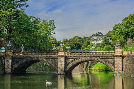Jardins extérieurs du palais impérial de Tokyo avec le célèbre pont Nijubashi et un cygne