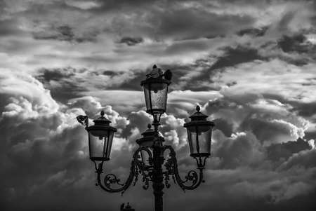 Old street lamp in Venice with pigeons against a cloudy sky (Black and White)