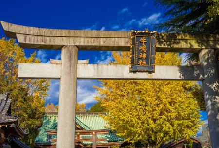 Tokyo, Japan, November 19, 2017: Religion and spirituality in Tokyo. Autumn view of Ushijima Shrine