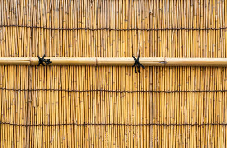 Yellow Bamboo dog wall with black knots as background Reklamní fotografie - 120740066