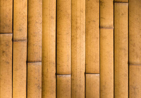 Yellow Bamboo cane wall as background Reklamní fotografie - 120740259
