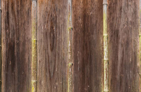 Old bamboo and wooden planks wall with musk as background Reklamní fotografie - 120740392