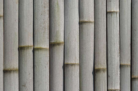 Old dried grey bamboo cane wall as background