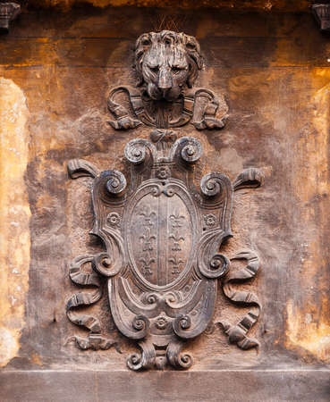 Old heraldic emblem with lily and St Mark Lion head on a Venice wall